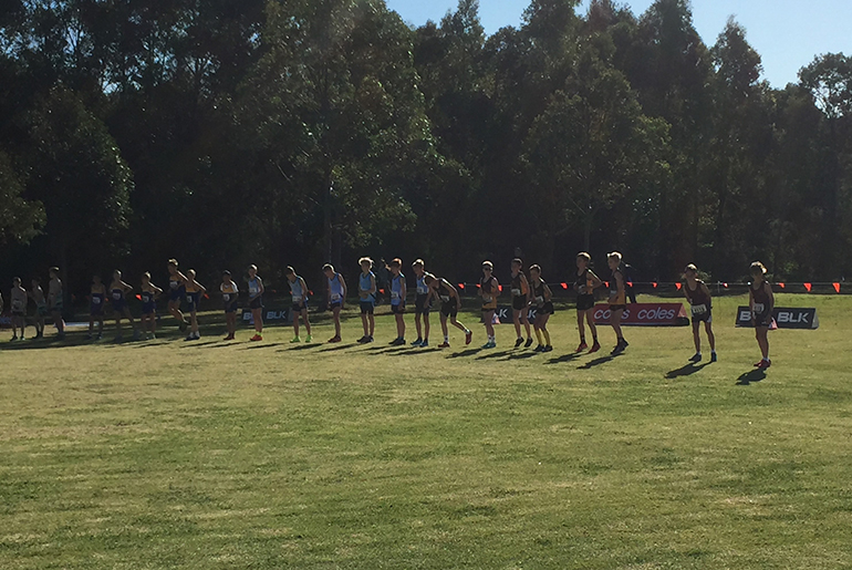 2019 Cross Country – Live Results
